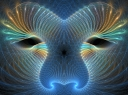 cosmic_face