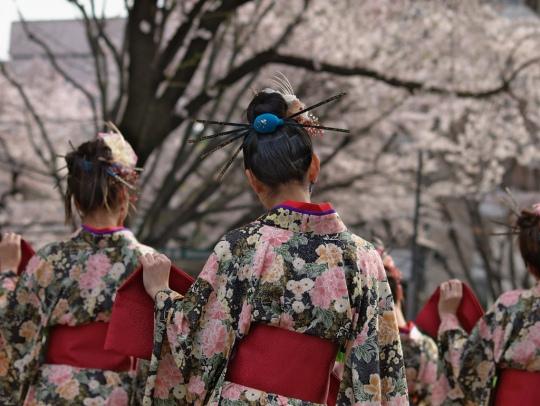 Sakura_Festival_2009_in_Sagamihara_1