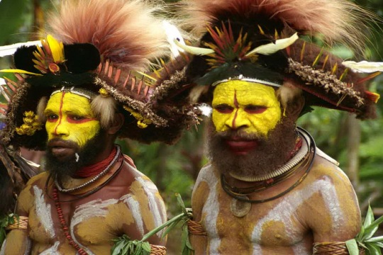 Yellow_Tribe_Dancers PNG