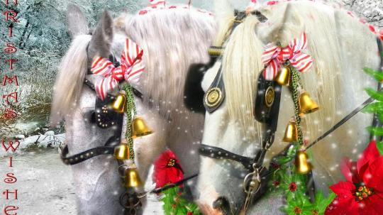 christmas_team-1244372