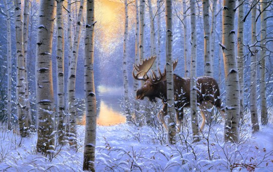 derk-hansen-on-the-move-painting-winter-snow-animals-forest-moose