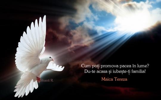 Pacea in lume