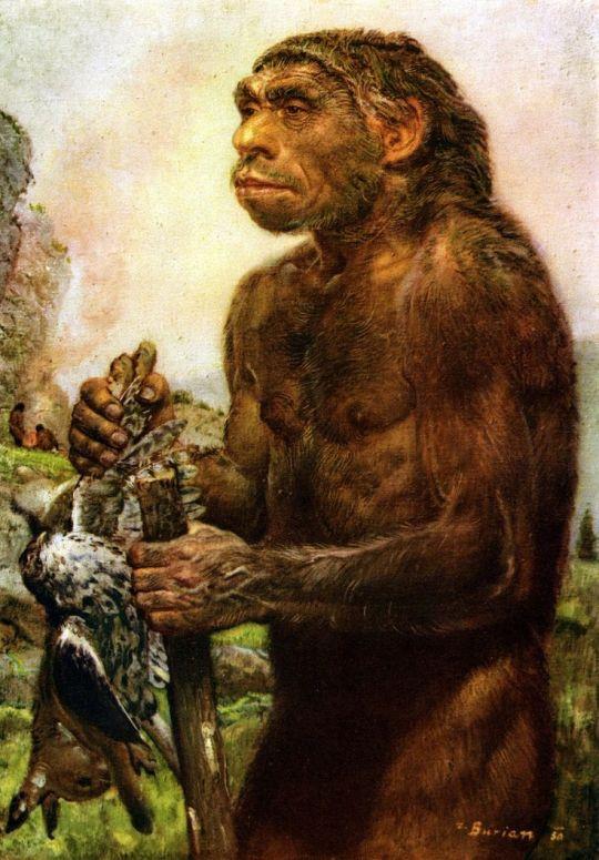 An Neanderthal - Burian
