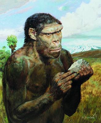homo_erectus_olduvaiensis Burian_1972