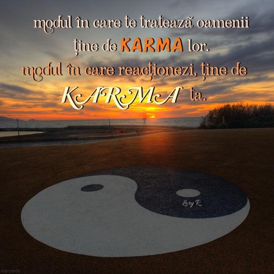 Karma fiecaruia