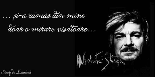 Nichita Stanescu - Mirare visatoare