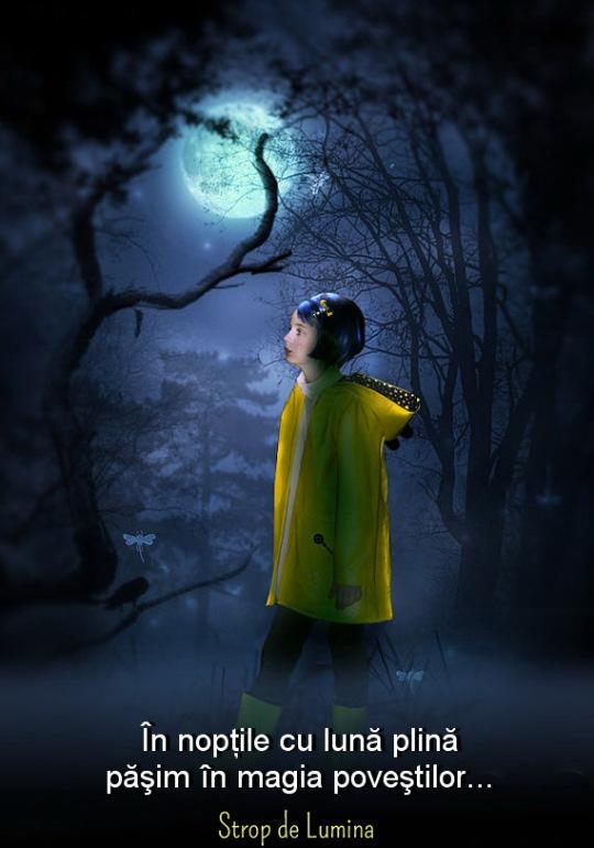 Noptile cu luna plina
