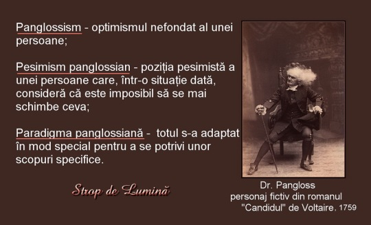 Dr. Pangloss si panglossismul